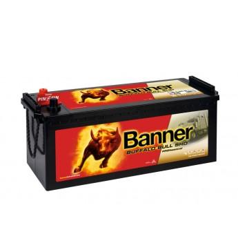 Banner Buffalo PRO 145 Ah 12V 800A akumuliatorius 514x189x195/220mm