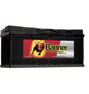 Banner 100Ah 820A 12V Power PRO akumuliatorius 354x175x190mm
